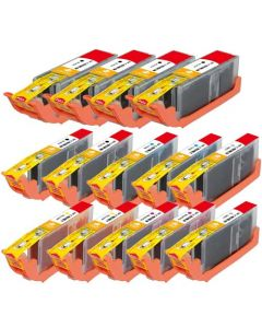 Compatible for Canon PGI-250XL & CLI-251XL Set of 14 Ink Cartridges: 4 Black and 2 of each Black, Cyan, Magenta, Yellow, Gray